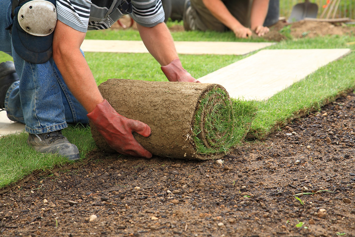 Maintenance and administration of green spaces and construction of playgrounds